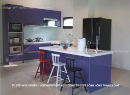 Tủ bếp inox TLI AN08