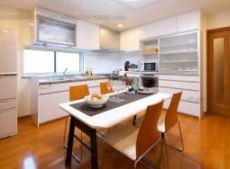 Tủ bếp inox TLI AO01